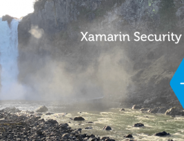 Introducing: The Xamarin Security Scanner